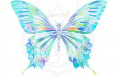 il_ani_butterfly