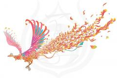 il_bird_fenix