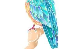 il_bird_kawasemi